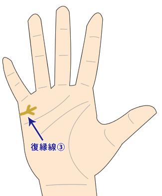 結婚線が3つまたの復縁を暗示する線