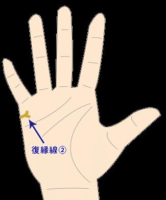 復縁を暗示する結婚線が二股の画像