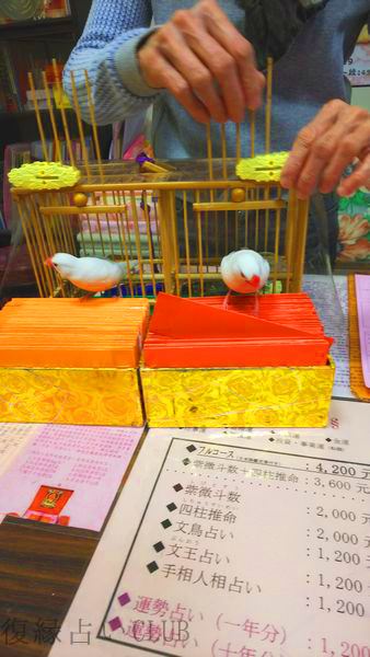 台北の龍山寺の占い横丁で鳥卦(鳥占い)を日本語でする方法